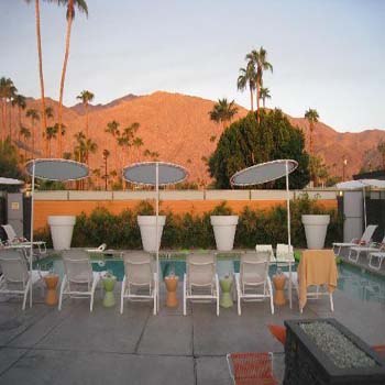 Centurey Palm Springs pet friendly gay men's hotel Located in the warm sands ...
